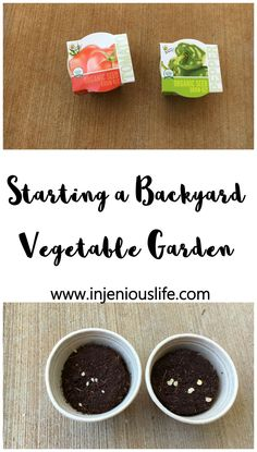 Starting a Backyard Vegetable Garden - injeniouslife