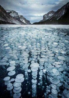 Frozen Abraham Lake