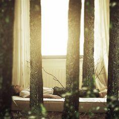 """""""My Bed"""" By Phillip Schumacher"""
