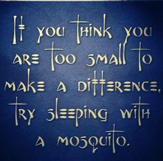 If you think you are too small to make a difference try sleeping with a mosquito.
