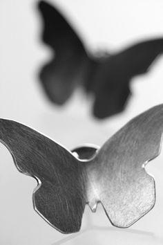 Papilio pinssi