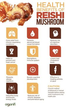 Better immunity, more energy, and better sleep are some of the benefits of red reishi mushrooms. Find out what Red Reishi could do for you and how to get it. Heart Attack Symptoms, Tomato Nutrition, Calendula Benefits, Stomach Ulcers, Salud Natural, Coconut Health Benefits, Healthy Oils, Healthy Snacks, Stop Eating