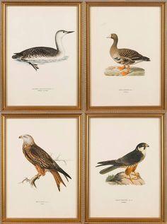 Set de 4 litografias do inicio do sec.20th, 41cm x 31cm, 2,225 USD / 2,000 EUROS / 6,990 REAIS / 14,790 CHINESE YUAN