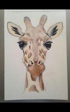 giraffe drawing drawings painting easy animal face draw pencil animals paintings giraffes sketches simple sketch amazing tutorials watercolor journal uploaded