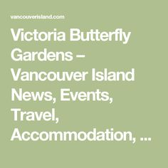 Victoria Butterfly Gardens – Vancouver Island News, Events, Travel, Accommodation, Adventure, Vacations
