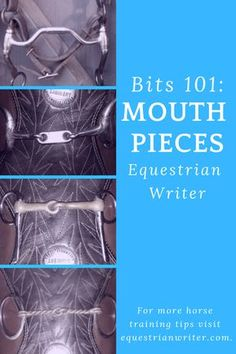 Everything you need to know about the most common bit mouth pieces on the market Bits For Horses, Horses And Dogs, Western Horse Tack, Western Riding, Horse Riding, Western Saddles, Horseback Riding Tips, Horse Therapy, Horse Care Tips