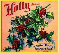 AC Covina Los Angeles Christmas Holly #1 Orange Citrus Fruit Crate Label