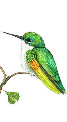 48 Ideas Humming Bird Art Watercolor Hummingbird Painting For 2020 Watercolor Hummingbird, Hummingbird Art, Easy Watercolor, Watercolor Animals, Humming Bird Watercolor, Painting & Drawing, Watercolor Paintings, Watercolor Artists, Watercolor Flowers