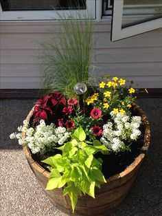 Whiskey barrel planters on rollers. So much easier to move! Made 4 of them for the front porch. A favorite element is the Pony Tail grass! It lasted all through the winter as a nice focal point for the planters. Whiskey Barrel Flowers, Whiskey Barrel Planter, Half Barrel Planter Ideas, Outdoor Flowers, Outdoor Plants, Outdoor Gardens, Garden Yard Ideas, Lawn And Garden, Porch Plants