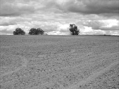New Beginnings, Romania, Agriculture, Beach, Water, Outdoor, Gripe Water, Outdoors, The Beach