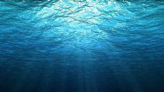 underwater themed wallpaper for desktops JPG 333 kB Underwater Wallpaper, Underwater Background, Underwater Images, Ocean Wallpaper, Underwater Photography, 1080p Wallpaper, Live Wallpapers, Free Images For Blogs, Free Background Images
