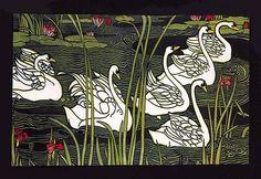 Journal de la Beaute / Swans
