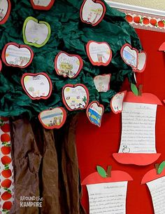 Apple themed bulletin board ideas to display student work with easy collective noun activity and student writing for Johnny Appleseed Day. Apple Bulletin Boards, September Bulletin Boards, Writing Bulletin Boards, Kindergarten Bulletin Boards, Classroom Bulletin Boards, Classroom Themes, Preschool Classroom, Classroom Resources, Classroom Organization