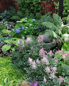 A Garden in the Shade | Gardening/Yard | Pinterest | Heuchera ... on hosta and daylily garden, hosta and caladium garden, hosta garden plans blueprints, hosta and hydrangea garden,
