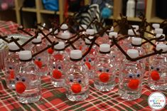Reindeer Water Bottl