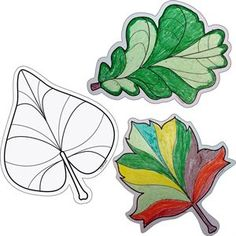 """Color Me 6"""" Designer Cut-Outs - Leaves - Great for fall decorating!"""
