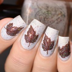 Fall Autumn Leaf Nail Art Stamping Design