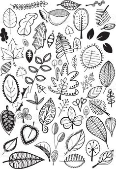 quirky doodle clip leaves drawn nature garabato fun artwork doodles leaf illustrations illustrationer ilustraciones inspiration enjoyable istockphoto drawing rf hojas