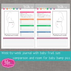 My Pregnancy. More Organized. Weekly by lifemoreorganized on Etsy