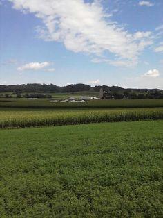 Wisconsin Dairy Farm