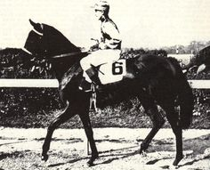 Jacola (USA) 1935 Br.m. (Jacopo (GB)-La France (USA) by Sir Gallahad (FR) 1937 Champion 2YO Filly
