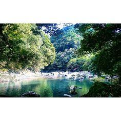 【ten.rara】さんのInstagramをピンしています。 《鳥のさえずり。 ひんやりした空気。  この季節には人もいないし携帯も繋がらない深い森。  しばらくいると静かな気持ちになる。  #森 #秋 #深呼吸 #静 #自然 #安心 #故郷 #思い出 #forest #autumn #silence #meditation #hometown #peace #love》