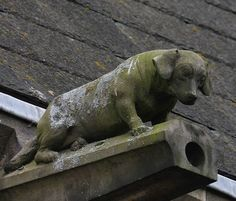 Dachshund gargoyle! This is amazing.