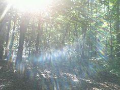 El reflejo del sol. Esto es hermoso.   The reflection of the Sun, this is beautiful.
