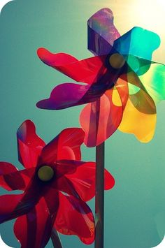 turquoise. purple. red. violet. coral. yellow. red orange. aqua. sky blue.