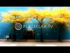 Lounge Music - Piano Music, Easy Listening & Downtempo - BLACK AND WHITE (Piano Moods) - YouTube