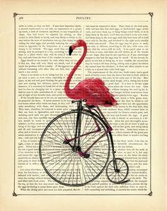 Digitaldruck - Flamingo Einrad - Druck auf antiker Buchseite - ein Designerstück von printery bei DaWanda