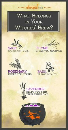 magick, pagan, and witch Bild Wicca Witchcraft, Magick, Religion Wicca, Diy Halloween Party, Tarot, Story Starter, Under Your Spell, Hedge Witch, Kitchen Witchery