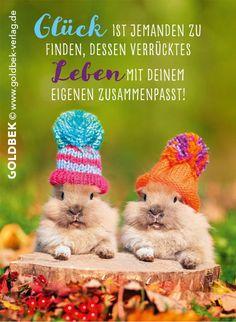 Postkarten - Glück. Süß, süßer. Doppelt süß.