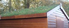 green roof shed