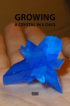 Growing a large copper sulphate crystal in 5 days