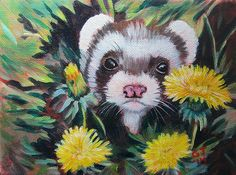 sweet ferret baby peeks out from the dandy-lions Raccoon Art, Funny Ferrets, Lion Painting, Cat Reference, Cute Animal Illustration, Otters, Dandy, Painting Inspiration, Painted Rocks