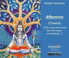 Rudralife provides Genuine Rudraksha which have been certified by an ISO 2015 accredited lab. 1 Mukhi to 21 Mukhi Collector Grade Rudraksha available here Mahakal Shiva, Shiva Art, Hindu Art, Lord Shiva Names, Lord Shiva Family, Hindu Deities, Hinduism, Lord Rama Images, Rudra Shiva