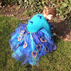 Carnaval kostuum Pauw   peacock costume