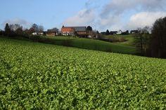 Wandern in der Glöckheide bei Wülfrath  ... #winterglück #deinnrw #neanderland #nl4bloggers