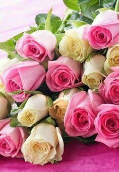 Trust the flower experts to handcraft a stunning bouquet, guaranteed to stay fresh for days. Bouquets & flower arrangements available for same day delivery. Beautiful Rose Flowers, Love Rose, Amazing Flowers, Beautiful Flowers, White Roses, Pink Roses, Pink Flowers, Flower Farm, My Flower