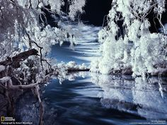 National Geographic. Coopers Creek, Australia. Photo by Robert Woodland. Blue and white winter.