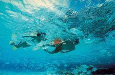 #snorkel #IslaMujeres en #Catamaran ... www.playaservice.com
