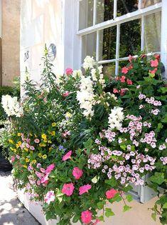 Garden Design & Planter Installations | Anne Cothran Garden & Floral, Inc.