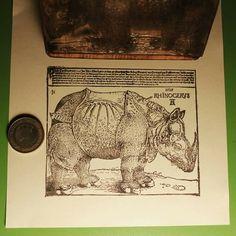 Gergedan, Albert Dürer