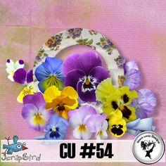 CU#54 by Black Lady Designs