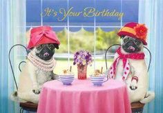 Belated Birthday Tea Party Happy 19th Cards Pug Puppies Pugs Dog Life Special Occasion