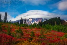 Pro landscape photographer Kevin McNeal tells us why Mount Rainier makes a perfect place for photographing fall foliage.