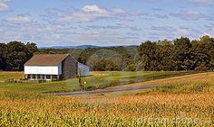 Gettysburg Pennsylvania Barn and Corn Fields