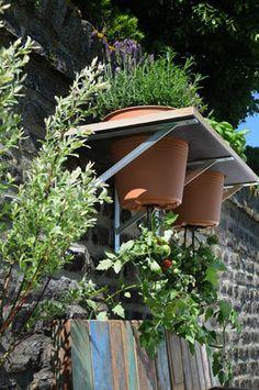Anleitung: Tomaten pflanzen leicht gemacht Hanging tomatoes in the garden to save space Vegetable Planters, Container Gardening Vegetables, Container Plants, Vegetable Gardening, Backyard Plants, Landscaping Plants, Edible Garden, Easy Garden, Gemüseanbau In Kübeln