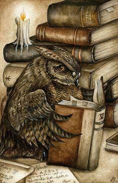 reading owl by Marc Potts.love the owl! I Love Books, Good Books, Books To Read, Reading Books, Library Books, Creative Illustration, Illustration Art, Wise Owl, Owl Art